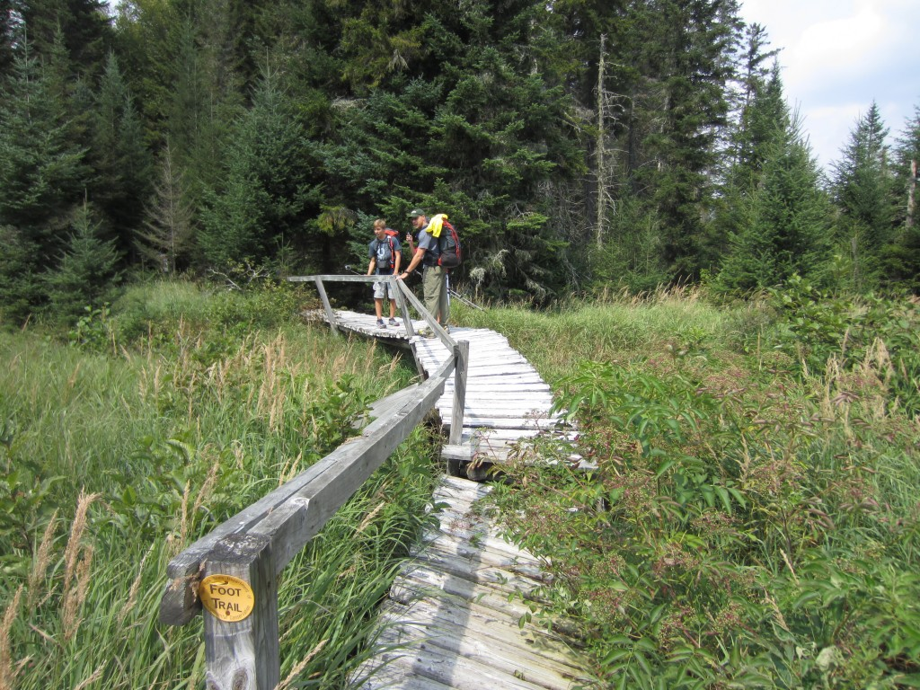 Rickety trail crossing