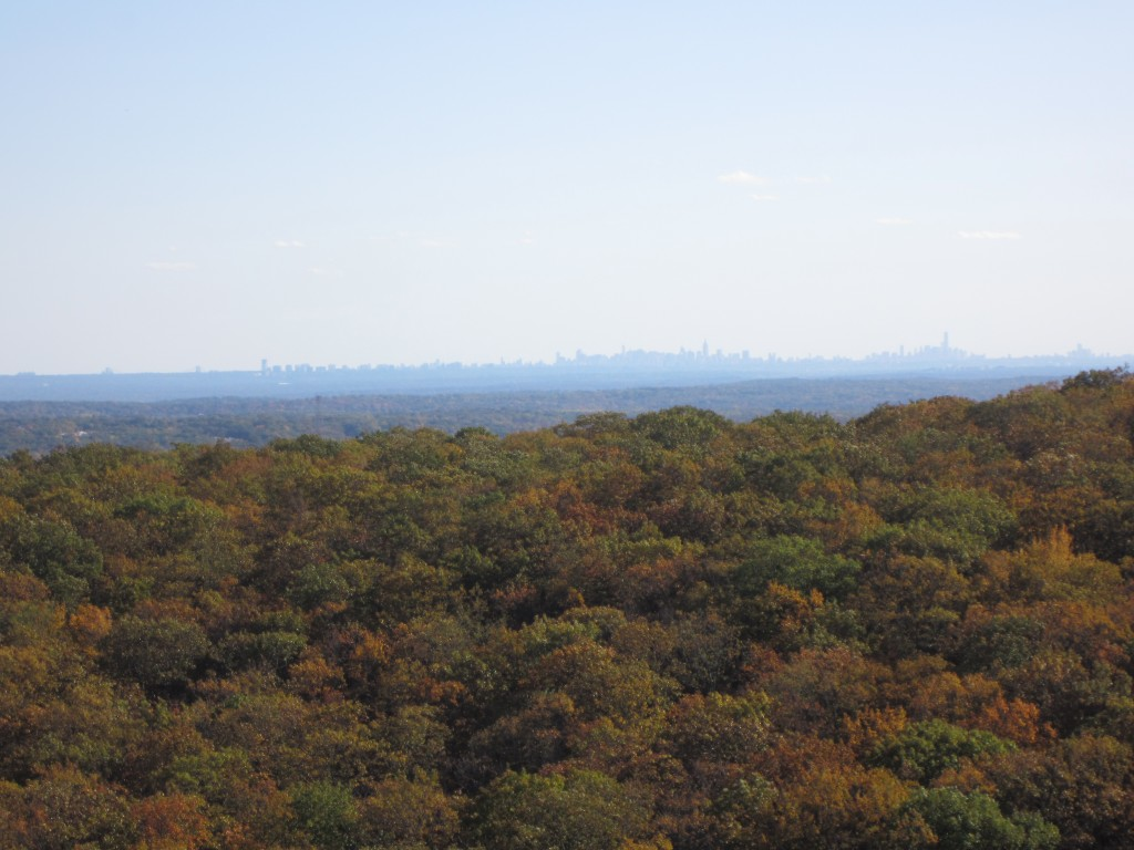 New York City skyline 20 miles away