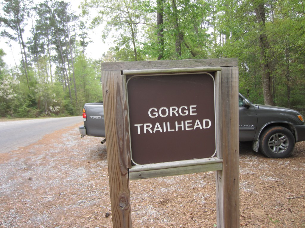 The Gorge Trail