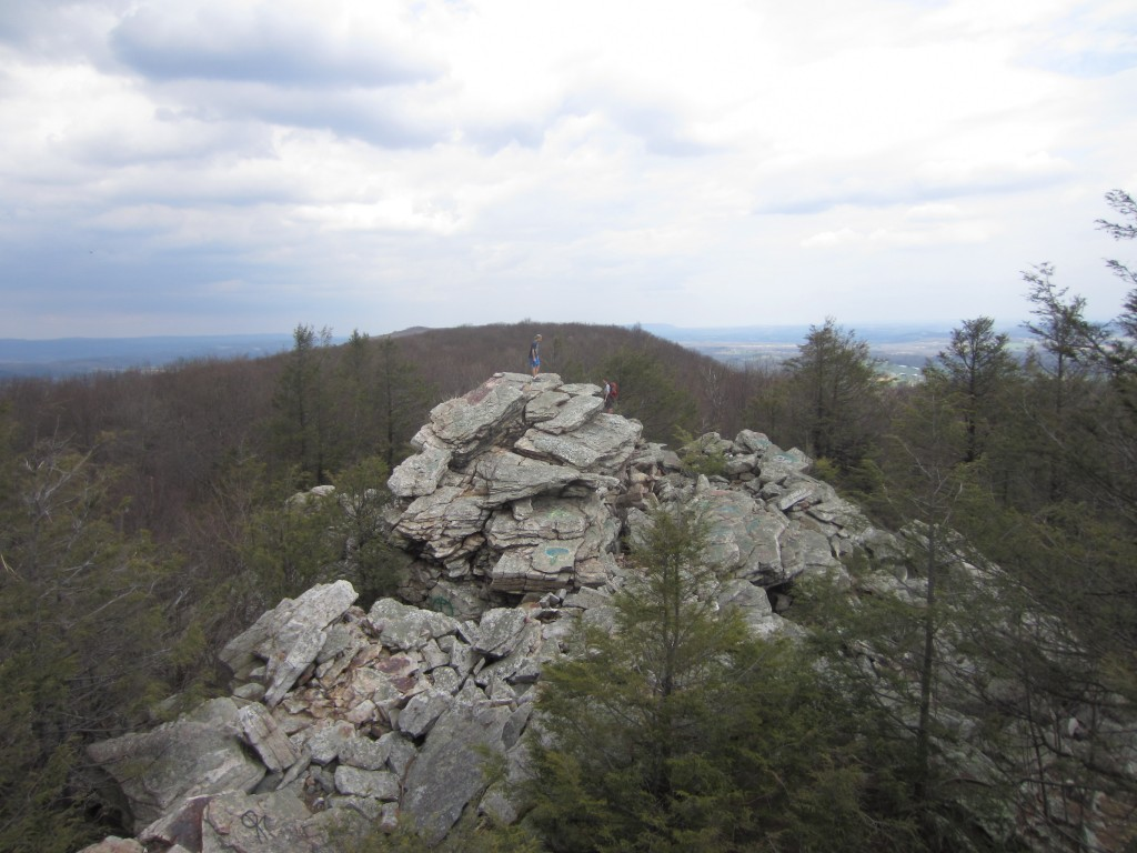 View from Bear Rocks