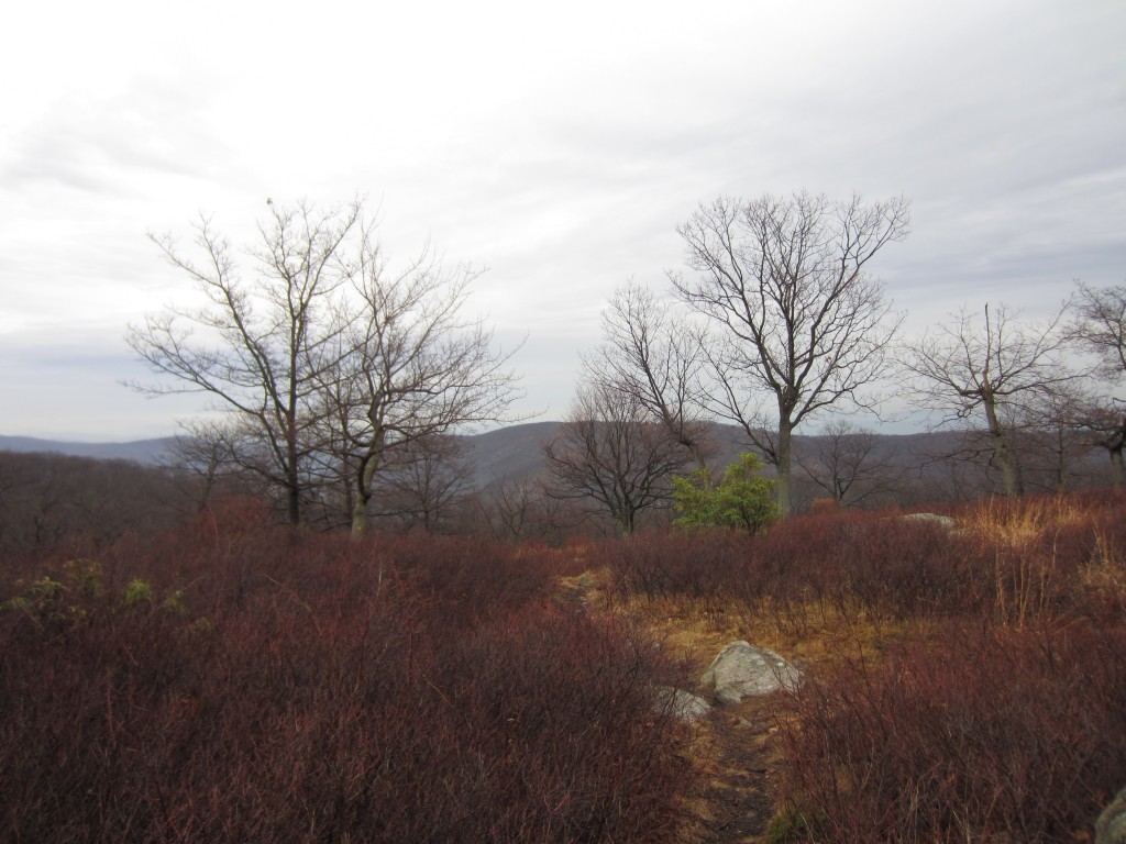 Medium image of suffern bear mountain trail