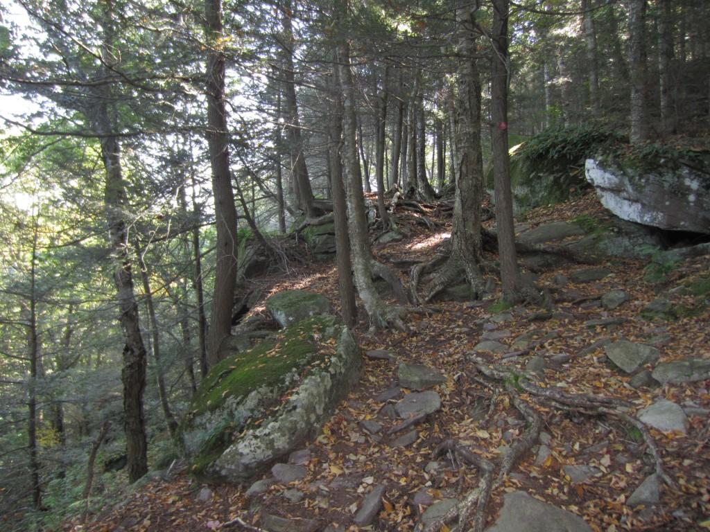 Trail uphill