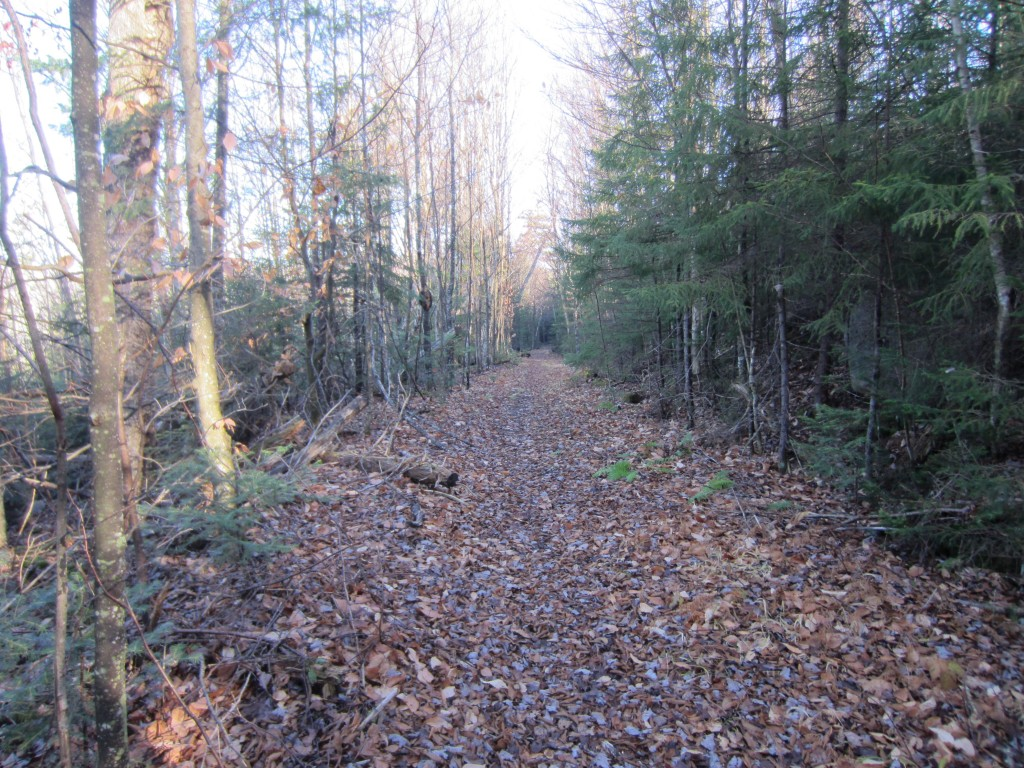Old railroad grade
